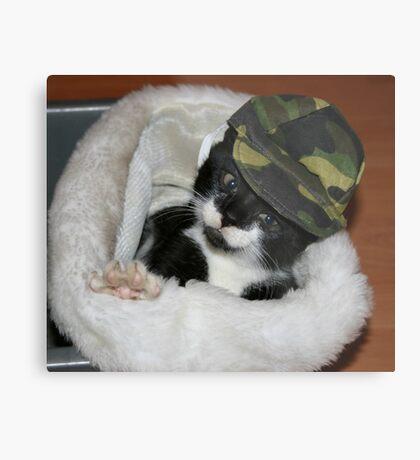 Army Kitty Metal Print