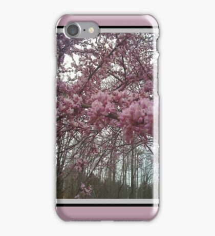 New England Red Bud Blossoms iPhone Case/Skin
