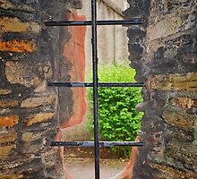 Bishops Window by kalaryder
