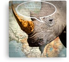 the balls of the Rhino poachers Canvas Print