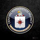 Central Intelligence Agency - CIA Emblem 3D on Black Velvet by Captain7