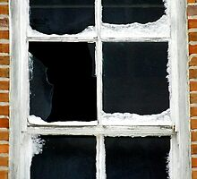 Winter Window Detail by Timothy  Ruf