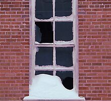 Winter Window by Timothy  Ruf