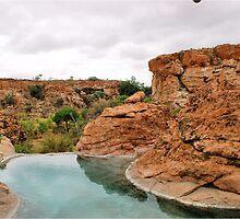 MAPUNGUBWE BEAUTY - MAPUNGUBWE SKOONHEID - SUID AFRIKA by Magriet Meintjes