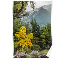 Fall For The Flatirons Poster