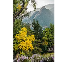 Fall For The Flatirons Photographic Print