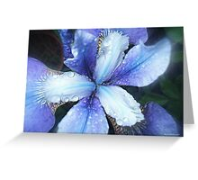 Why Does It Always Rain On Me! Greeting Card