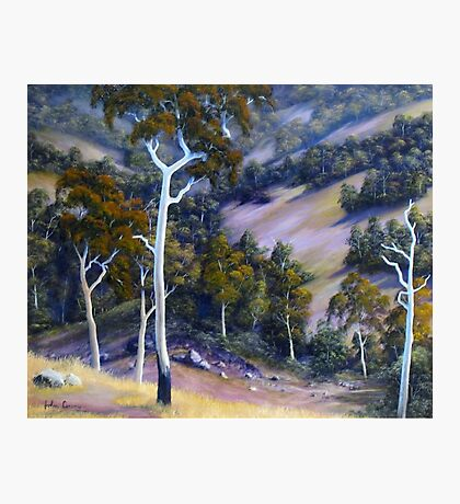 Sloping Hills Photographic Print