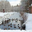 Winter in Geldrop - Nederland by Arie Koene