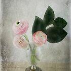 Ranunculus - JUSTART © by JUSTART
