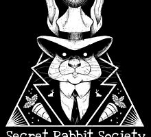 The Secret Rabbit Society by Stieven Van der Poorten