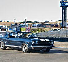 1966 Mustang GT350 II by DaveKoontz