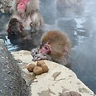 Snow monkeys by Istvan Hernadi