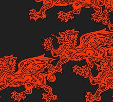 A rush of dragons by Hywel Edwards
