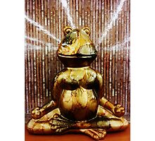 Seated Meditation of a Very Wise Frog Photographic Print