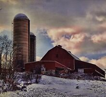 After the big snow by vigor