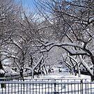 A Snowy Day by Patricia127
