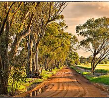 Spicers Road Sunset. by Paul Amyes