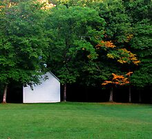 Palmer Chapel in the Cataloochee Valley, Great Smoky Mountains National Park by Bill Shuman