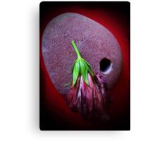 stone red hibiscus  Canvas Print