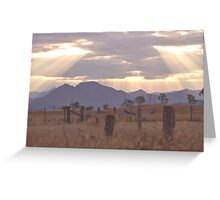 Australian country afternoon sunrays Greeting Card