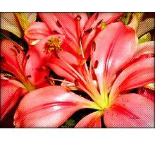 Alstroemeria Bouquet  Photographic Print