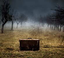Suitcase 03 by Mihai Ilie