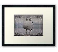 Seagull Affirmations Framed Print