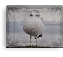 Seagull Affirmations Metal Print