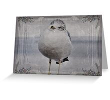 Seagull Affirmations Greeting Card