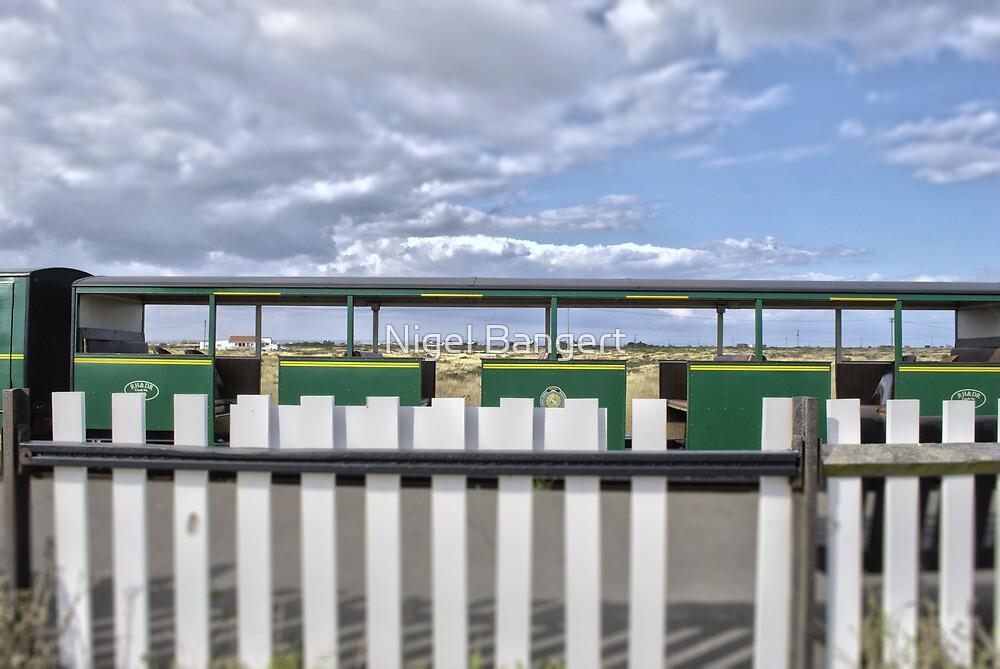 Dungeness Train by Nigel Bangert
