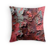 Paint Decay 1 Throw Pillow