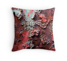 Paint Decay 2 Throw Pillow
