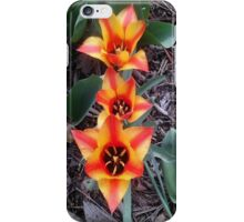 Looking down at Tulips iPhone Case/Skin