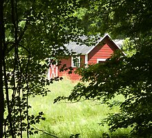 Small Red Barn Hidden in a Meadow by MFCoffin
