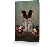 Cocoon 2 Greeting Card