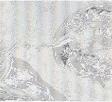 The Creation of Adam ASCII Art Poster by Alexandru Stanoi