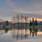 Morning Reflections by The Upper Foothills Pond by JHRphotoART