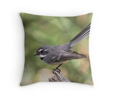"Grey Fantail ~ ""Meal Break"" Throw Pillow"