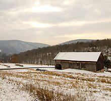 Wintry Farmland by Tom Gotzy