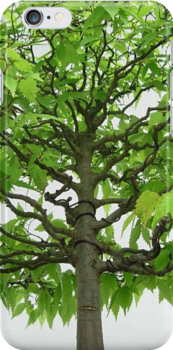 Bonsai Tree Iphone case by CreativeEm