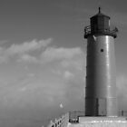Milwaukee Port Lighthouse and Sea Smoke Infared by Timothy  Ruf