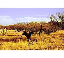 Southwestern Outdoor Art Photographic Print