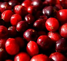 Cranberries by ptosis