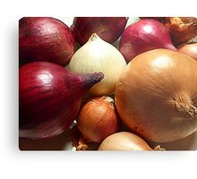 Do You Know Your Onions!! Metal Print