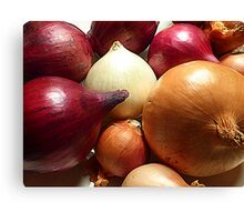 Do You Know Your Onions!! Canvas Print