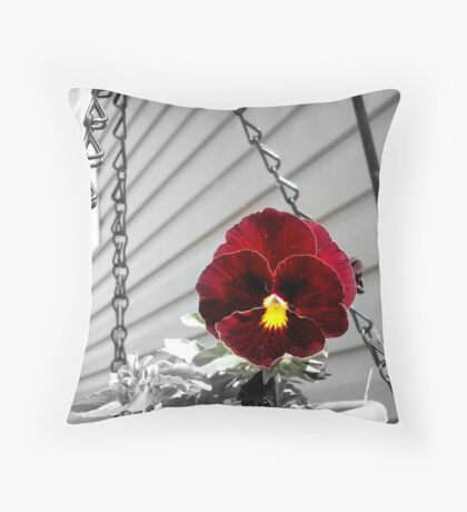 Color Pop Pansy Throw Pillow