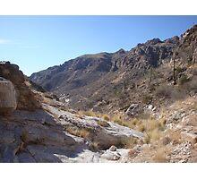 Sabino Canyon Photographic Print