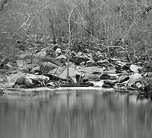 Unami Creek  Green Lane  Pennsylvania  USA by MotherNature2