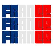France Flag Logo by Style-O-Mat